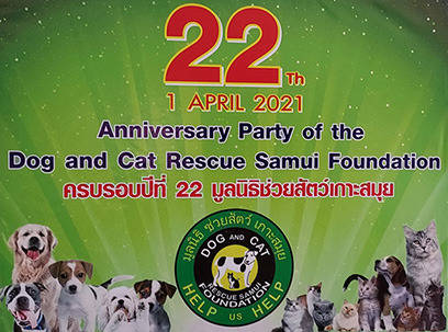 22 years Dog and Cat Rescue Samui