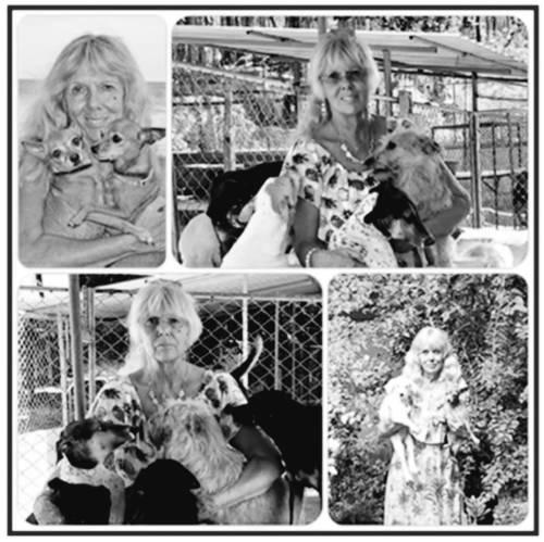 In Gedenken an Brigitte Gomm